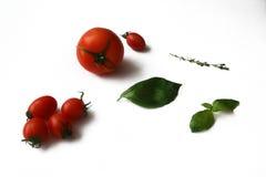 Pomodoro & basilico fotografie stock libere da diritti