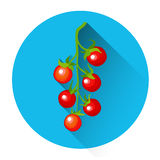 Pomodoro Cherry Colorful Vegetable Icon illustrazione di stock