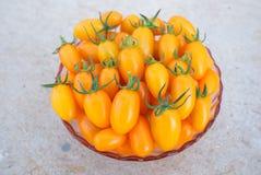 Pomodoro ciliegia giallo Fotografia Stock Libera da Diritti