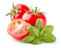 Pomodoro con basilico immagine stock