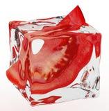 Pomodoro congelato Fotografia Stock