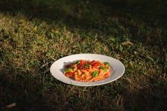 Pomodoro de Fusilli imágenes de archivo libres de regalías