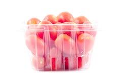 Pomodoro dell'uva isolato Fotografie Stock Libere da Diritti
