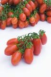 Pomodoro della Sicilia (Italia) Immagini Stock