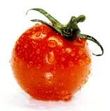 Pomodoro di ciliegia Fotografie Stock Libere da Diritti