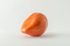 Pomodoro di cimelio Fotografie Stock