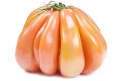 Pomodoro di Heirloom isolato su bianco immagine stock libera da diritti
