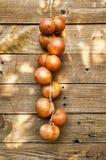 Pomodoro di Ramallet Fotografia Stock Libera da Diritti