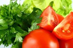 Pomodoro di Salat Fotografie Stock Libere da Diritti