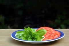 Pomodoro e basilico immagine stock