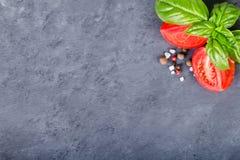Pomodoro e basilico con il condimento Fotografia Stock Libera da Diritti