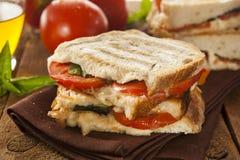 Pomodoro e mozzarella casalinghi Panini Immagine Stock Libera da Diritti