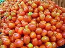 Pomodoro fresco Fotografia Stock