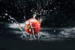 Pomodoro fresco che cade in acqua Fotografie Stock Libere da Diritti