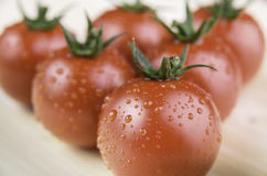 Pomodoro fresco con le gocce di acqua immagine stock