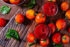 Pomodoro fresco con salsa al pomodoro fotografia stock libera da diritti