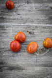 Pomodoro fresco del raccolto del bambino bio- Fotografia Stock