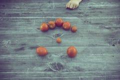 Pomodoro fresco del raccolto del bambino bio- Fotografia Stock Libera da Diritti