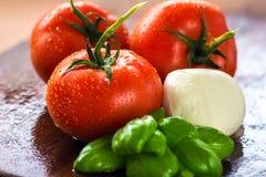 Pomodoro fresco della mozzarella Fotografie Stock