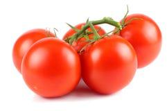 Pomodoro fresco isolato su priorità bassa bianca Fine in su fotografie stock