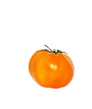 Pomodoro giallo fotografia stock