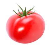 Pomodoro isolato su bianco immagine stock libera da diritti