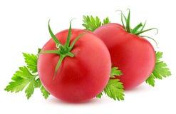 Pomodoro isolato su fondo bianco Fotografia Stock