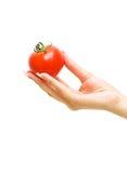 Pomodoro maturo in suo mano una ragazza Immagine Stock