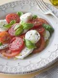 Pomodoro, mozzarella ed insalata del basilico Immagine Stock Libera da Diritti