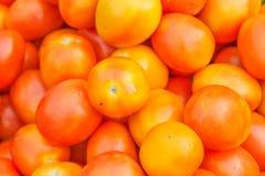 Pomodoro nel mercato della Tailandia Immagine Stock