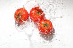 Pomodoro nell'acqua immagini stock