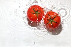 Pomodoro nell'acqua fotografia stock