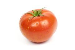 Pomodoro organico maturo Fotografia Stock