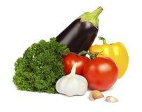 Pomodoro, prezzemolo, aglio, pepe e melanzana Immagine Stock