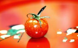 Pomodoro rosso fotografia stock libera da diritti