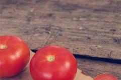 Pomodoro rosso Immagine Stock Libera da Diritti