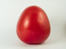 Pomodoro rosso fresco su bianco Fotografia Stock Libera da Diritti