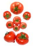 Pomodoro rosso fresco sulla parte posteriore di bianco Fotografie Stock
