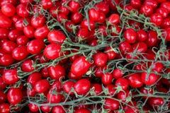 Pomodoro rosso organico fresco che vende nel mercato Concetto sano Immagini Stock