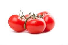 Pomodoro rosso, rossetto del tomate immagine stock