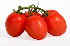 Pomodoro su bianco Fotografia Stock