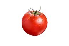 Pomodoro su priorità bassa bianca Fotografie Stock