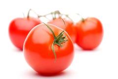 Pomodoro. Ver 2 Immagini Stock