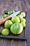 Pomodoro verde fotografia stock libera da diritti