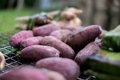 Pomoea a grillé batatas cuits avec le fourneau de charbon de bois images libres de droits
