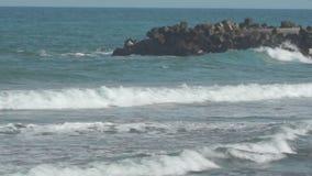 Pomorie Ondas tempestuosas del Mar Negro almacen de metraje de vídeo