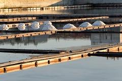 Pomorie salt lake Arkivfoton