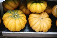 Pomp [kins bij de Markt van het Dalingslandbouwbedrijf stock foto
