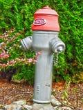 Pompa dei tubi di acqua Fotografie Stock