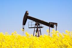 Pompa di olio arrugginita della terra immagini stock libere da diritti